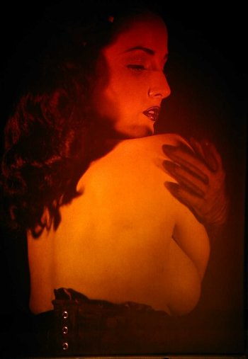 Picture of Dita's Back